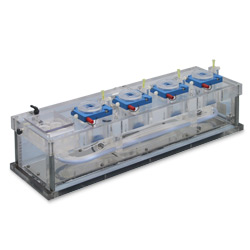 Chambers for Electrophysiology