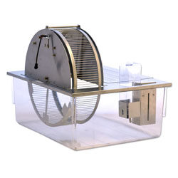 Activity Wheel and Living Chamber - Rat