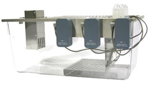 Triple Lickometer Chamber: Counters